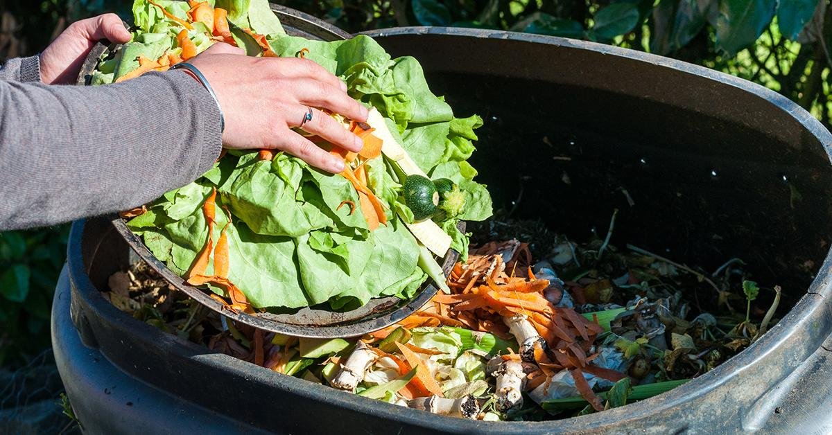 compost-food-waste-1542824597269-1542824599502.jpg
