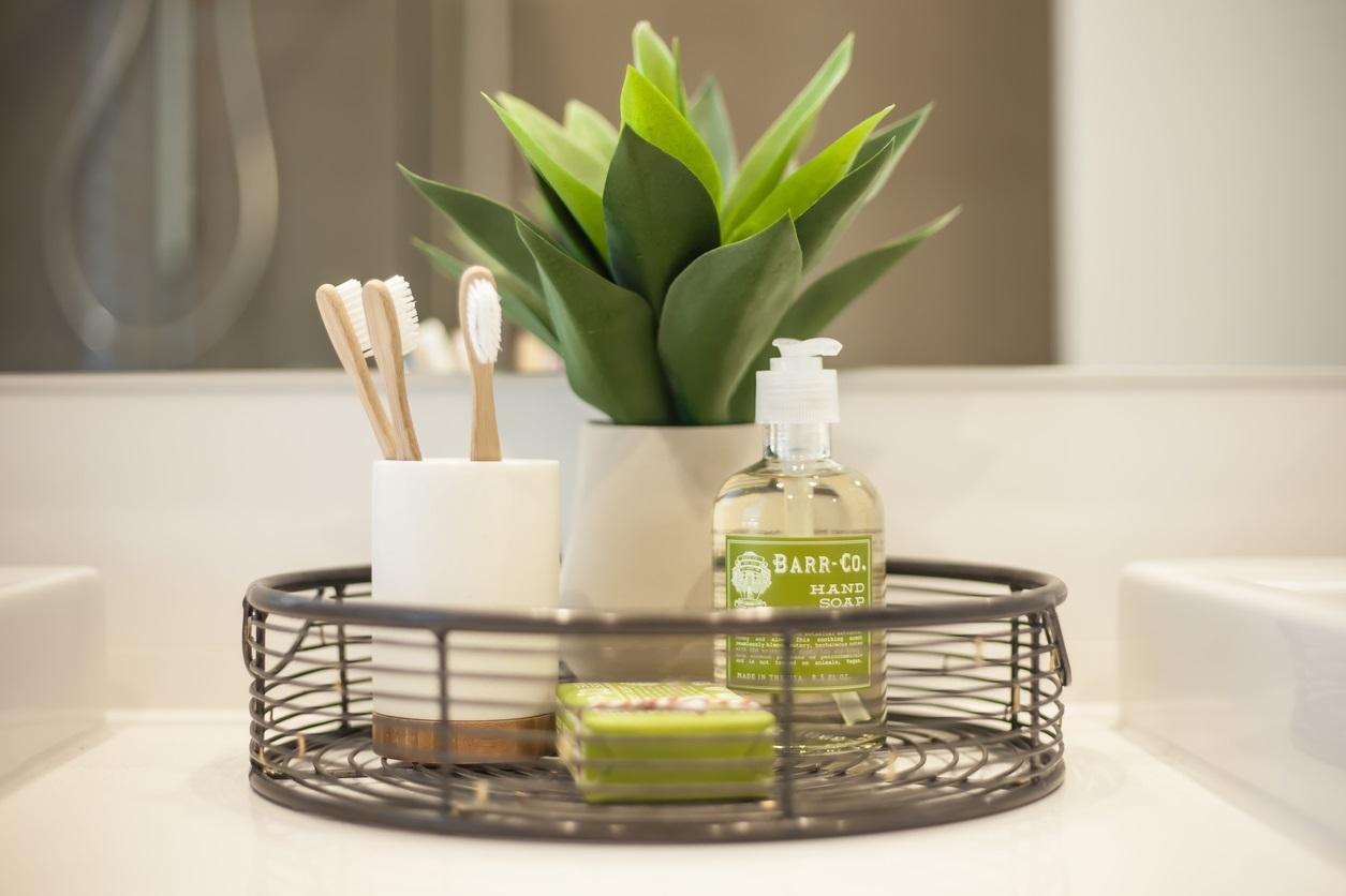 6 Best Houseplants That Will Grow Better In Your Bathroom