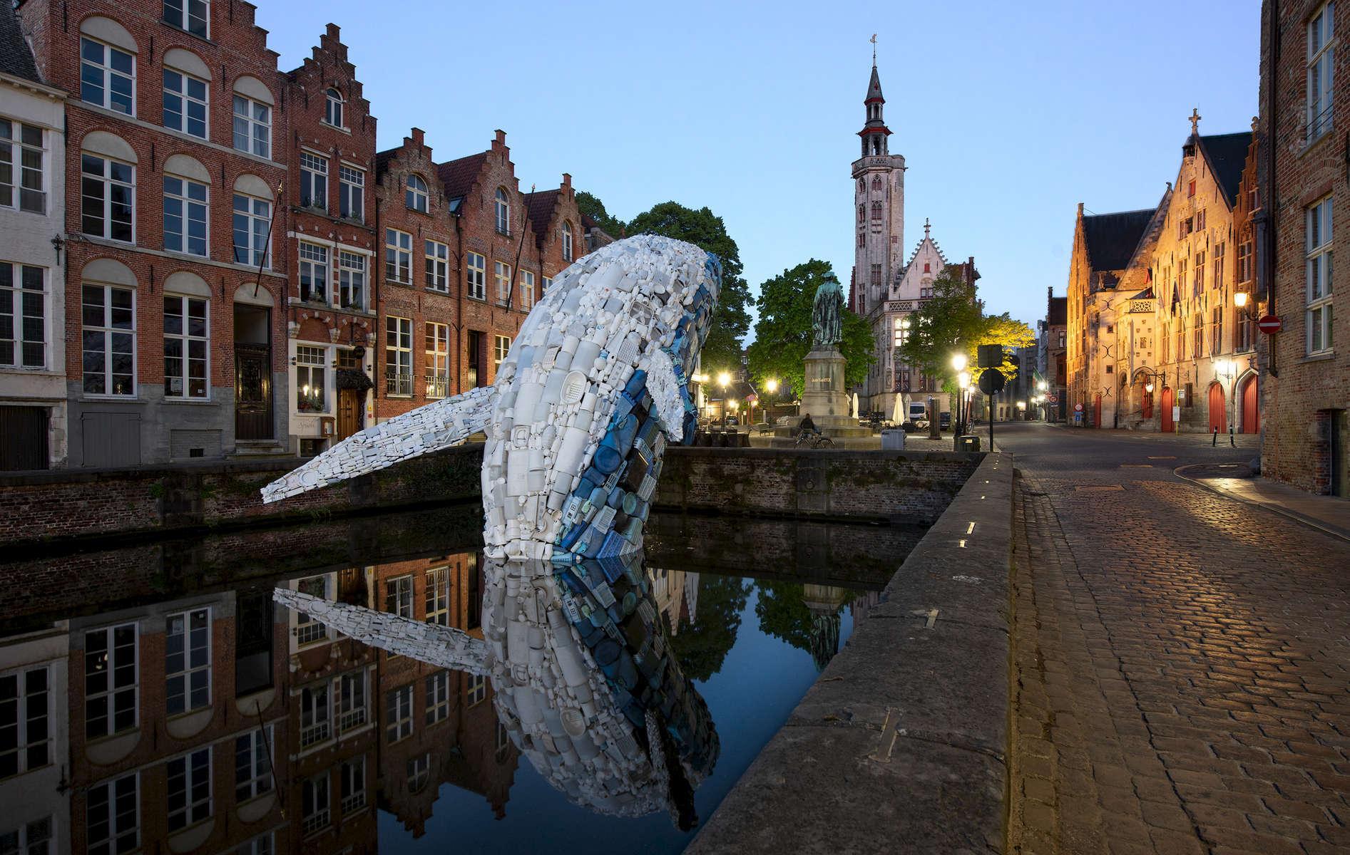 BrugesWhale-1-1528224870049.jpg