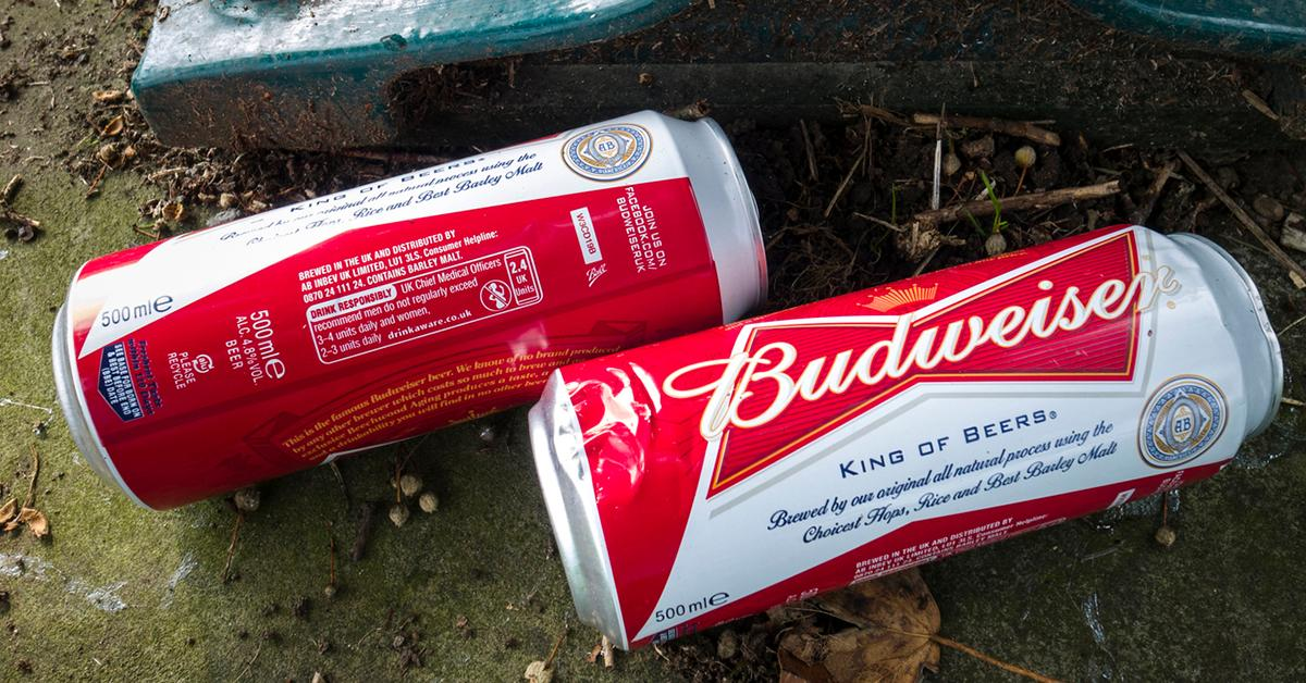 budweiser-wind-energy-1548363350205.jpg