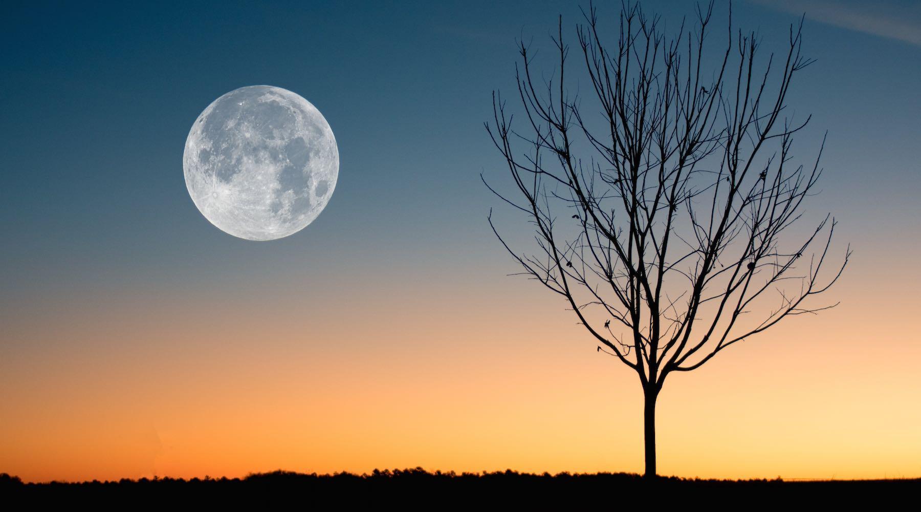 moon-1529350205618.jpg