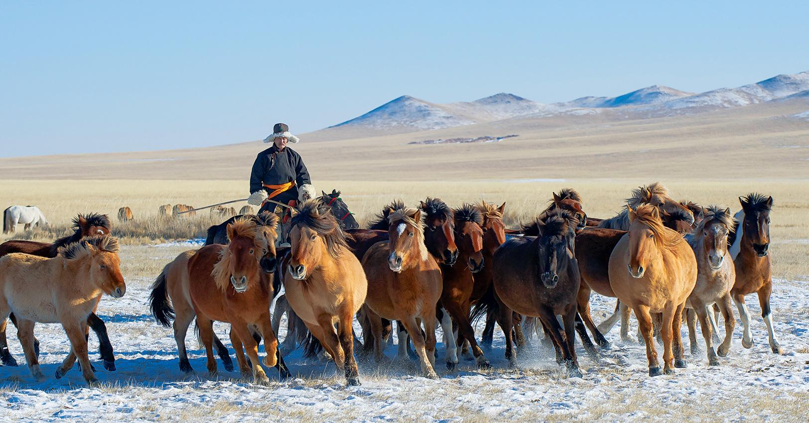 GM-Travel-SustainableTourismCountries-Mongolia-1525374370180.jpg