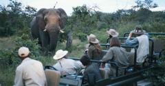 are safaris ethical