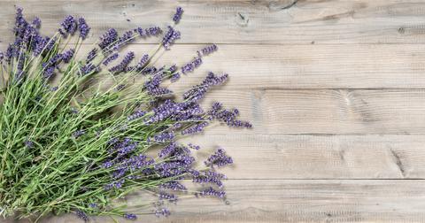zero-waste-lavender-1563288797222.jpg