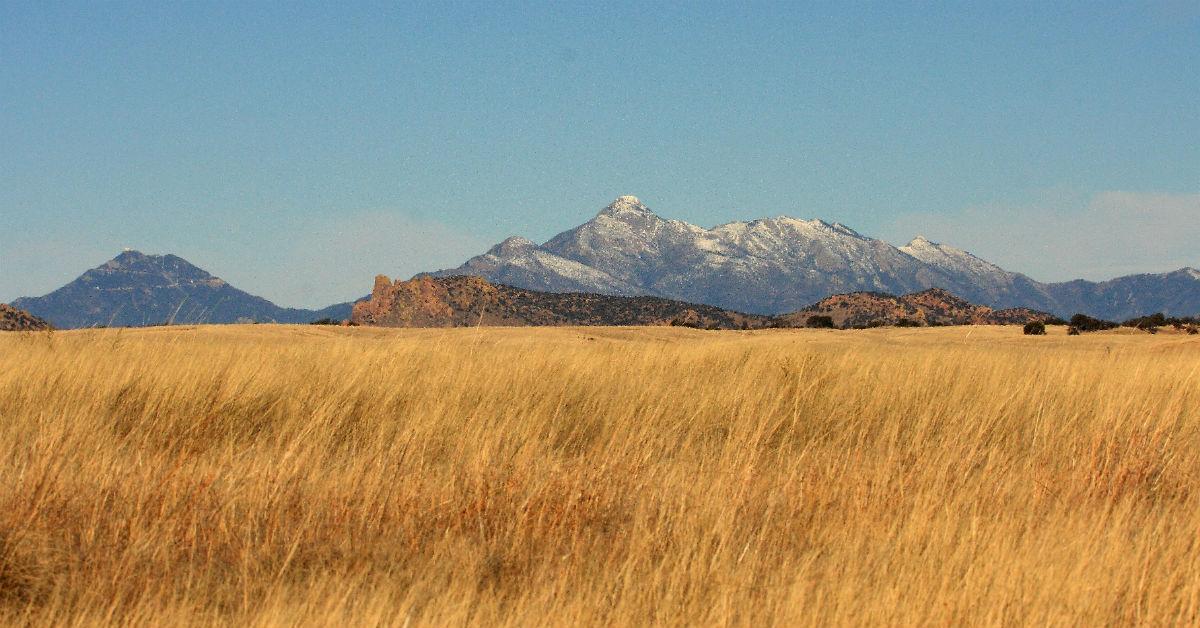 grasslands-1533655380847-1533655382662.jpg