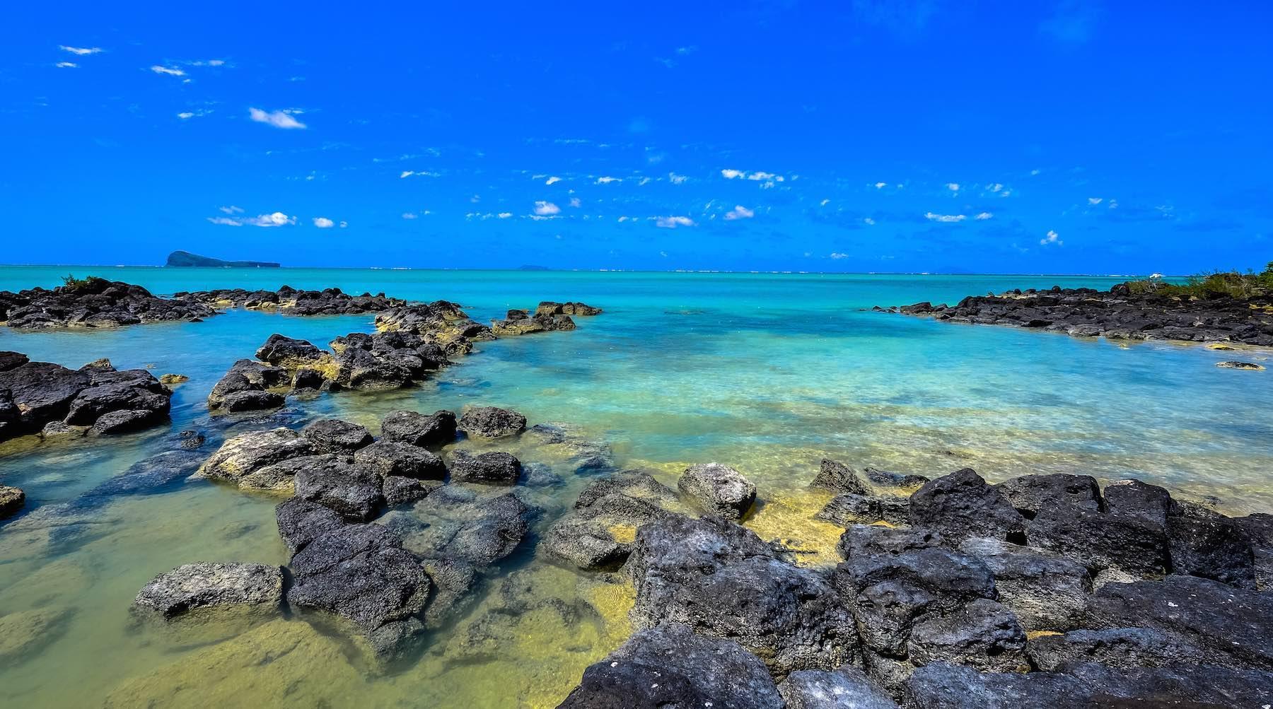 corals-1516998106318.jpg