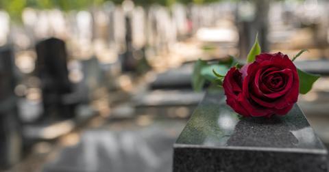 organic-burial-pods-1583261592154.jpg
