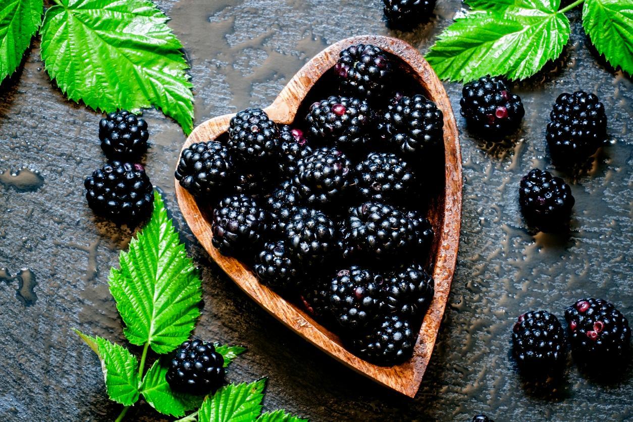berry4-1496261838059.jpg