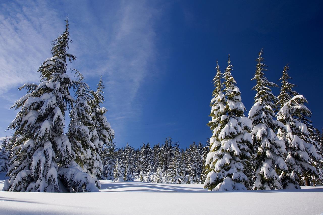 snow-1902052_1280-1514481745608.jpg