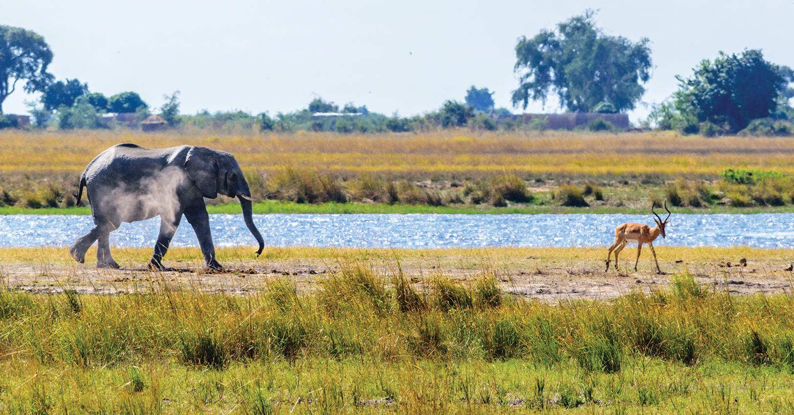 GM-Travel-SustainableTourismCountries-Botswana-1525374222285.jpg