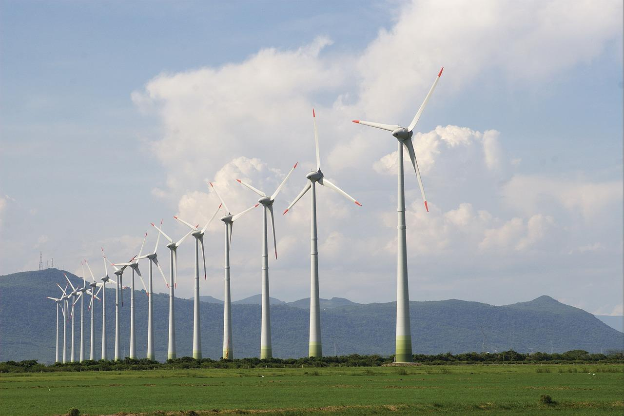 osorio wind farm _