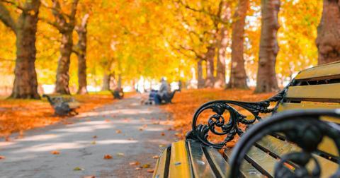 fall-equinox-1600790152297.jpg