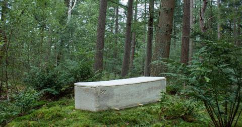 mushroom-coffin-3-1600788953196.jpg