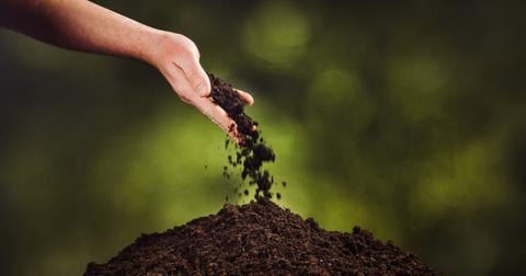 most-eco-friendly-burial-methods-1-1605128604363.jpg