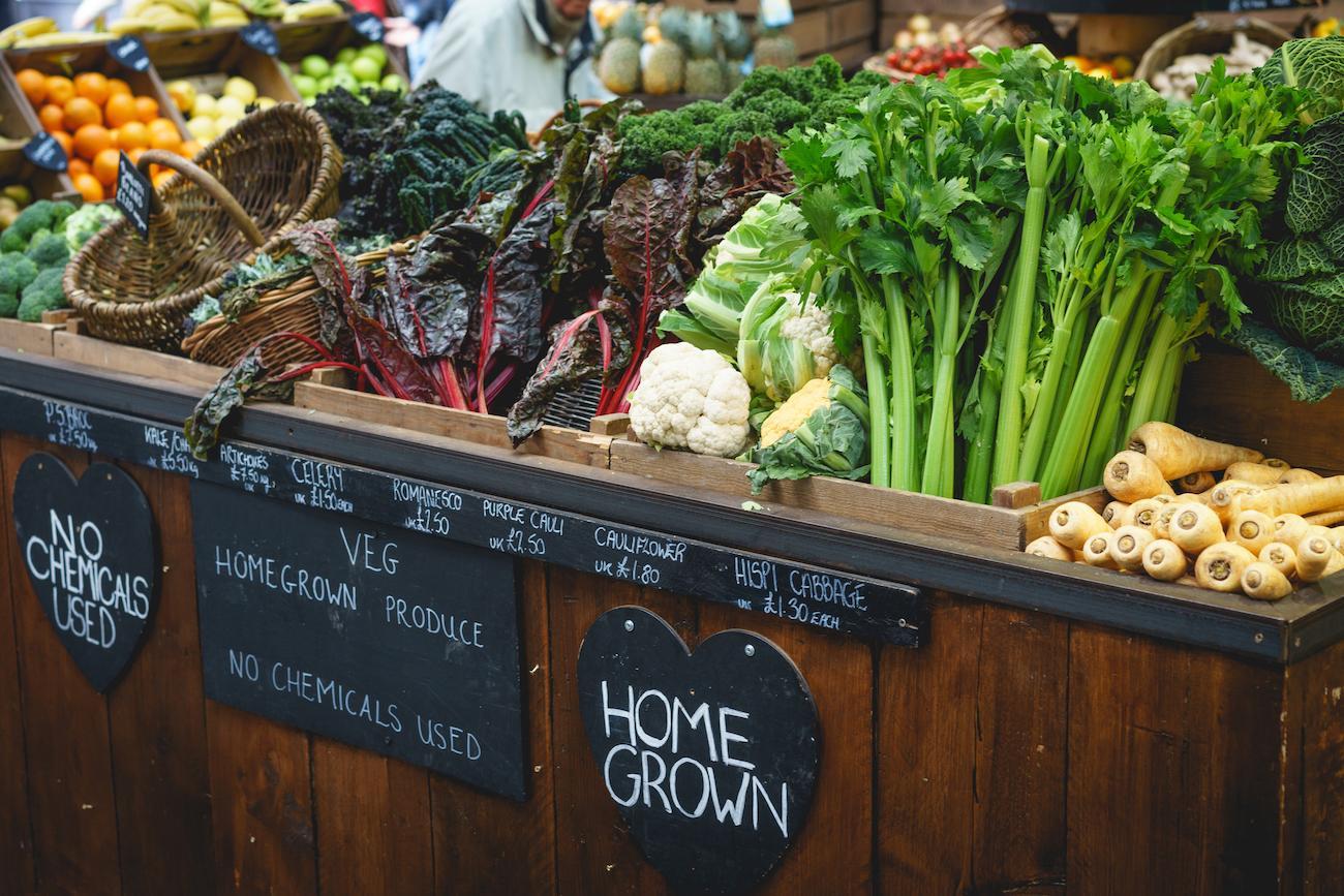 organic-food-1564606251269.jpg