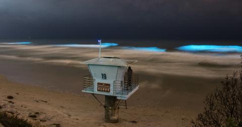 neon-blue-1589230460540.jpg