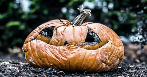 pumpkin-donate-compost-1602690635081.jpg