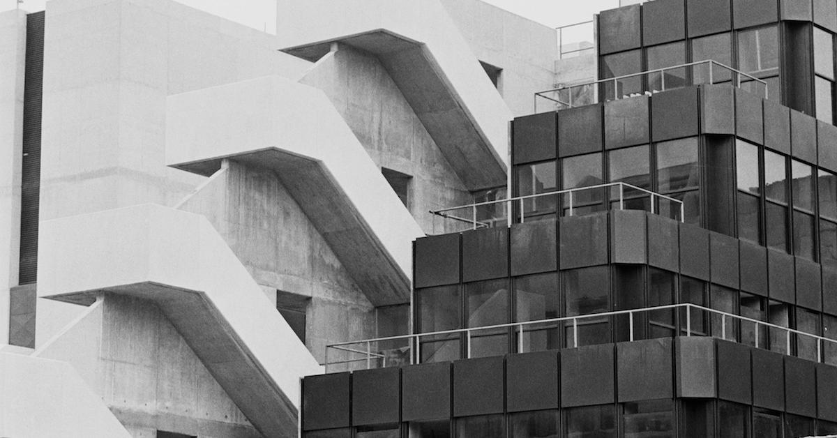 What is eco brutalism?