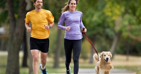 dog-leash-run-1605282384402.jpg