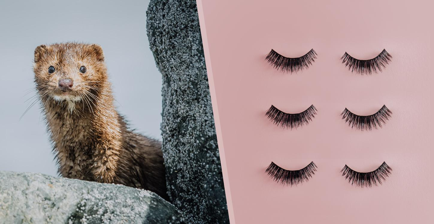 Sephora Bans Mink Fur Eyelashes, Will Only Sell Animal-Free Lashes