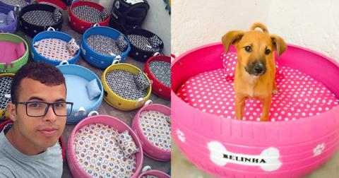 car-tires-upcycle-pet-beds-1549910013083-1549910015627.jpg