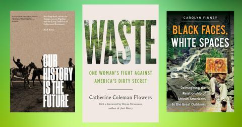 environmental-racism-books-1595019198744.jpg