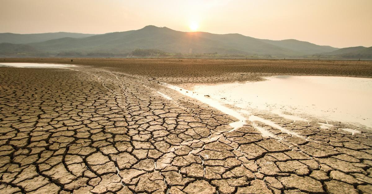 climate-change-1594655272672.jpg