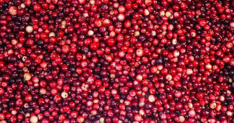 cranberries-1604934392225.jpg