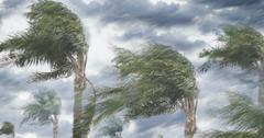 hurricane zeta path