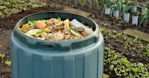 how-to-start-your-home-compost-1585754007136.jpg