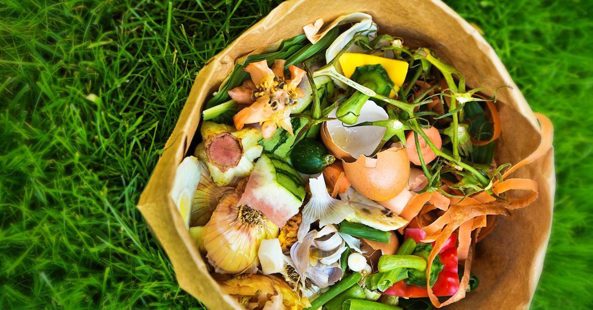 compost-bin-1569866905747.jpg