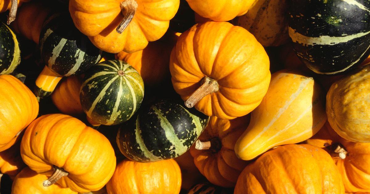 Edible Gourds