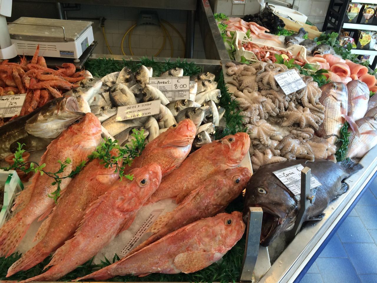seafood-1998212_1280-1494868171503.jpg