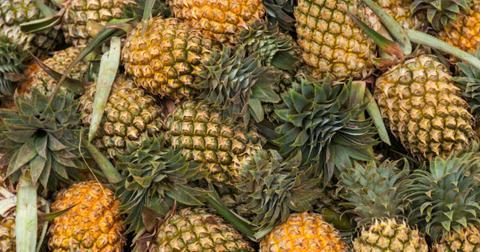 rotten-pineapple-poisonous-1-1605619985648.jpg