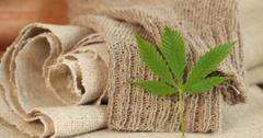 大麻面料的优点