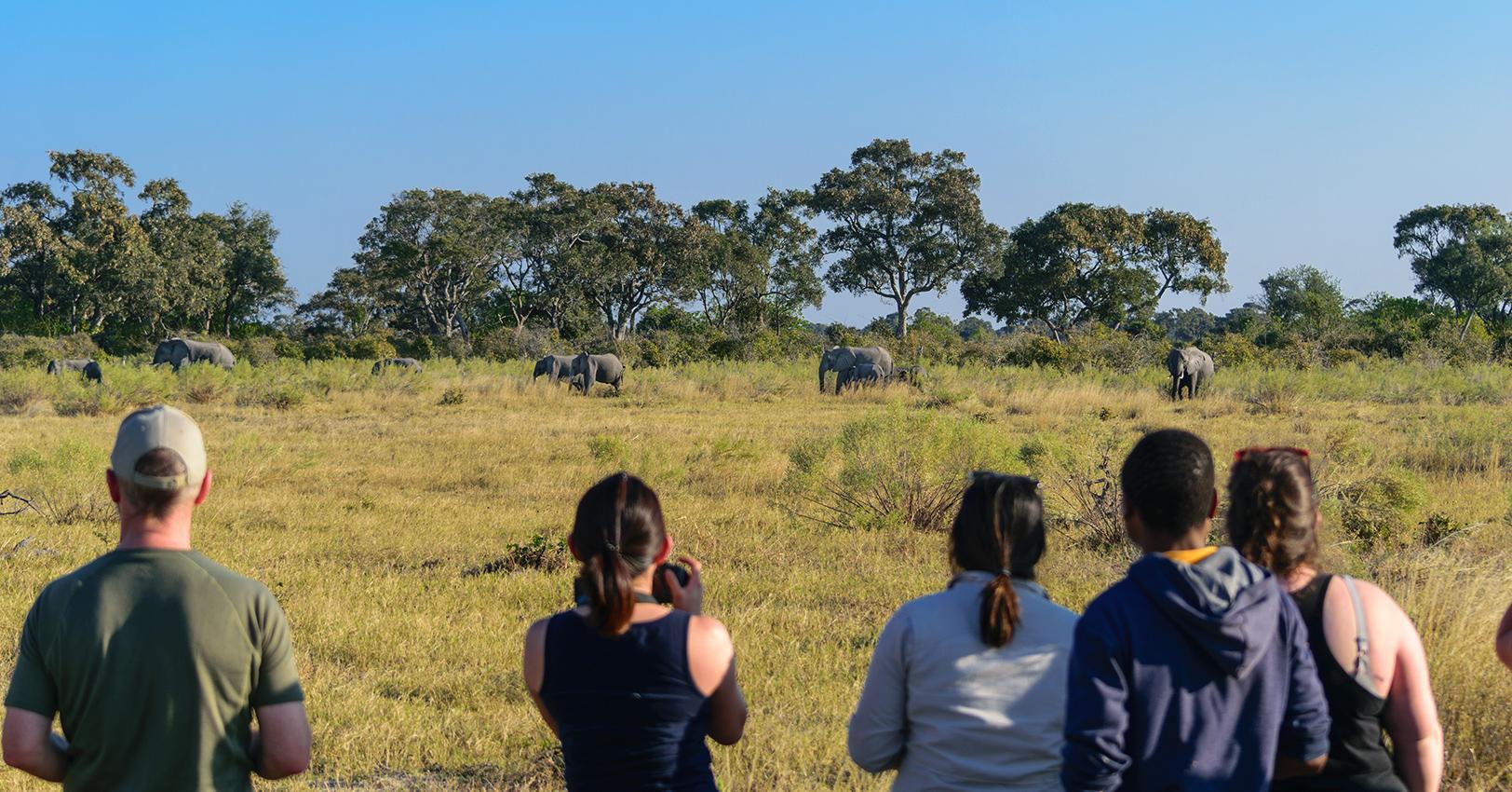 GM-Leigh-Intrepid-Travel-Botswana-Okavango-Botswana-(55-of-173)-1528134665593.jpg