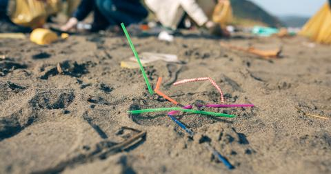 plastic-straw-recycleable-1573055071165.jpg