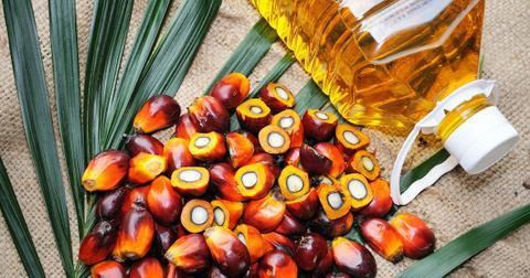 palm-oil-ban-1598643216690.jpg