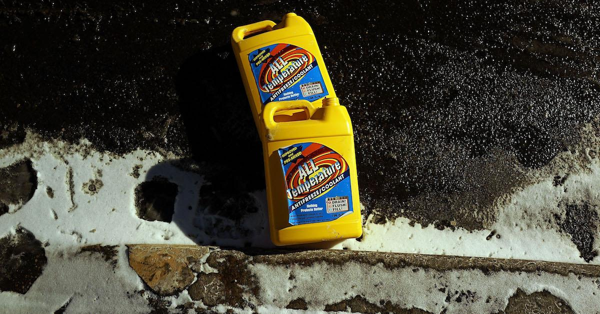 Who takes used antifreeze