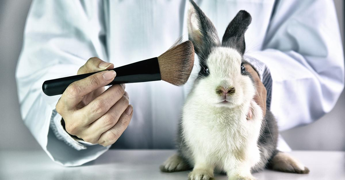What Are Cruelty Free Products Tested On