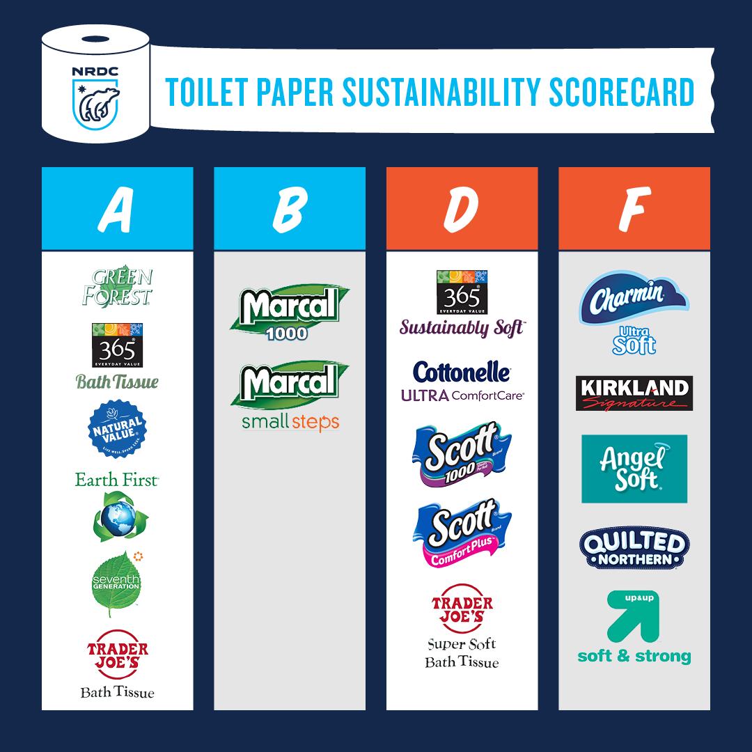 toilet-paper-1550692574169-1550692577064.png