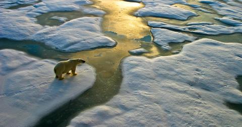 global-warming-effect-environment-1576273699187.jpg