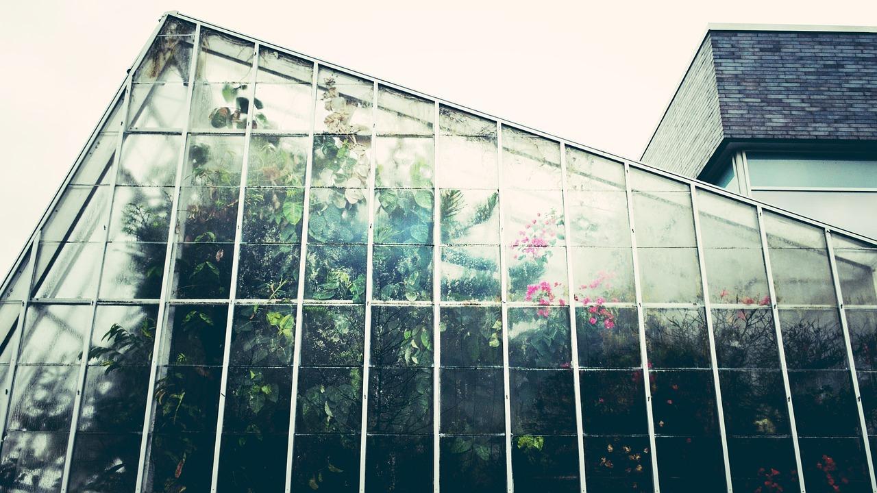 greenhouse-1246536_1280-1499445019810.jpg