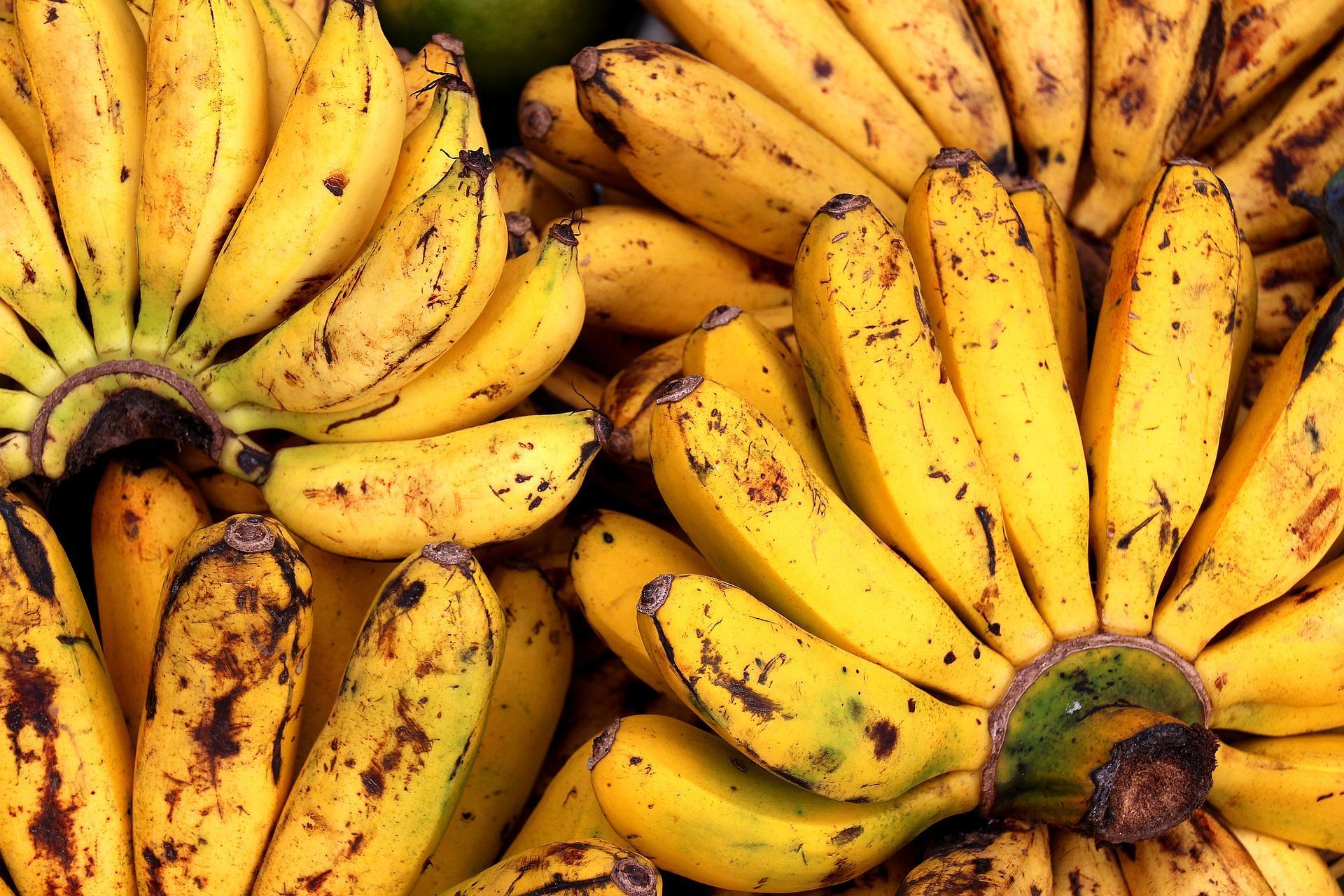 bananas-1774760_1920-1495058504575.jpg