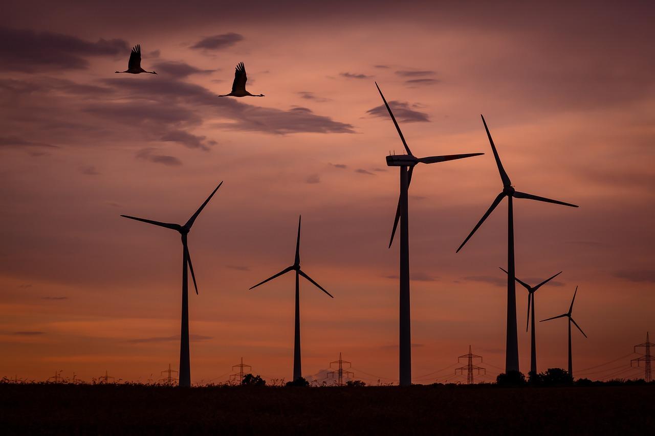 wind-park-1600377_1280-1504302922987-1504302925877.jpg