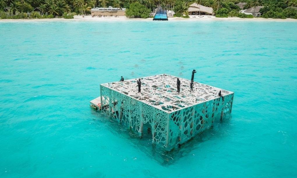 underwaterart-1533893814765-1533893817064.jpg