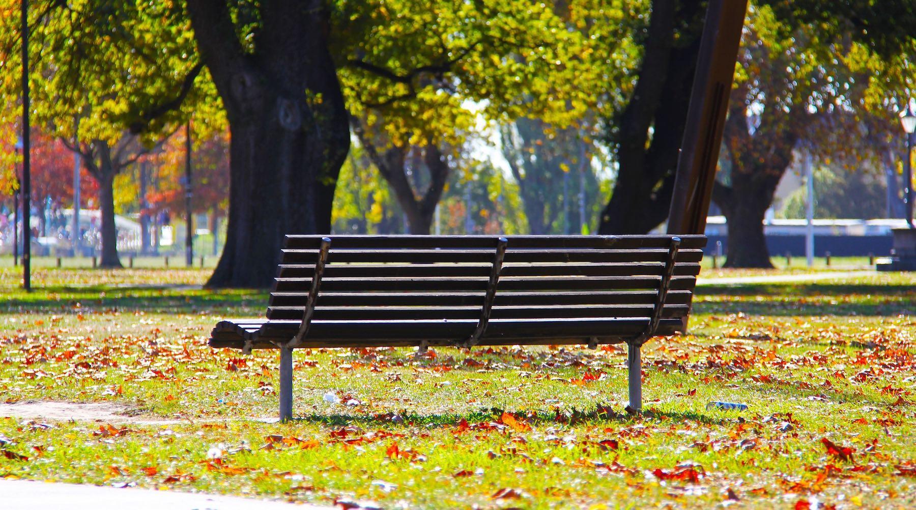 bench-1527029167140.jpg