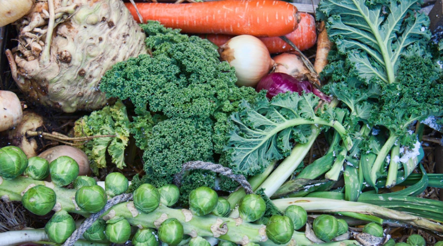 veggies-1507660961000-1507660965553.jpg