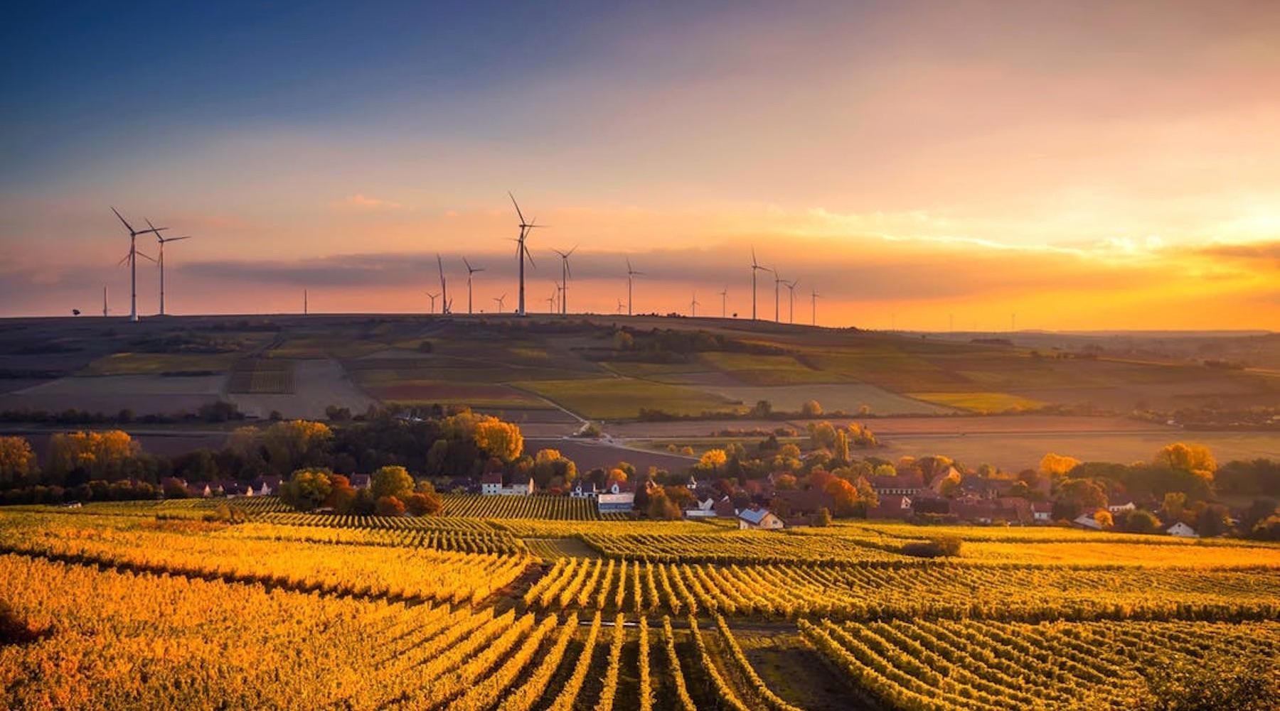 windfarm-1516033479064.jpg