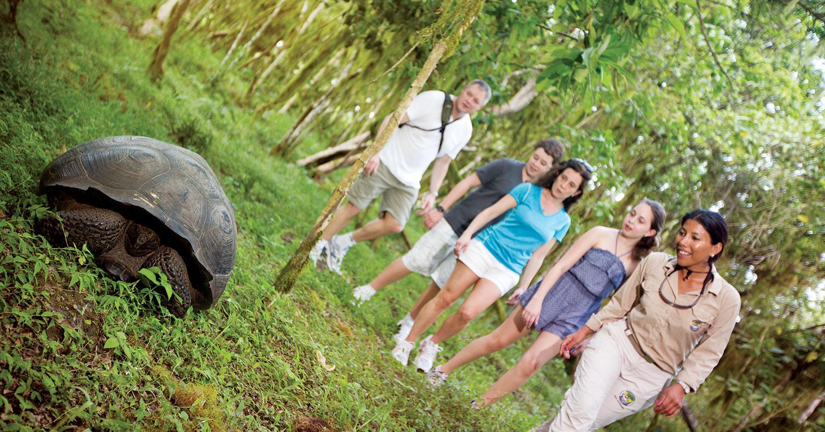 GAdventures-EcuadorGalapagos-TortoiseTravellers-HobbinsFamilyCEO-1526397628683.jpg